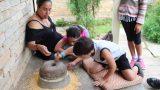 טוחנים תירס לתרנגולות בכפר האקולוגי