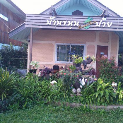 שלווה בפאי, תאילנד